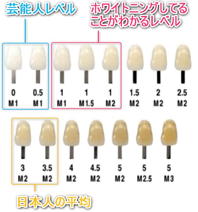 歯のシェードガイド目安付き画像